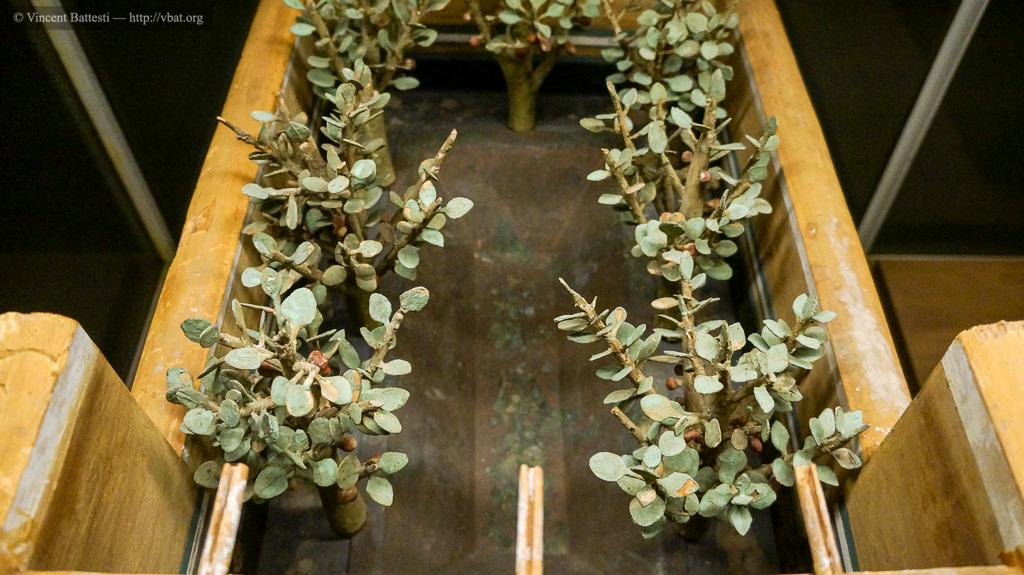 vbat.org - Arbres cultivés dans les jardins de l\'Égypte ancienne
